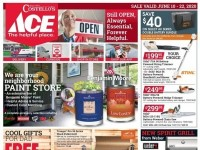 Ace Hardware (father's day sale - NY) Flyer