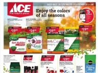 Ace Hardware (Red Hot buys) Flyer