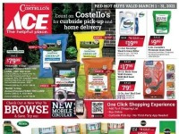 Ace Hardware (Red Hot Buys - NY) Flyer