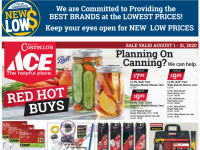 Ace Hardware (Special Offer - NY) Flyer