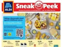 ALDI (In Store Ad) Flyer