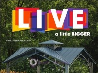 Big Lots (Live A Little Bigger) Flyer