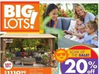 Big Lots (Soak Up The Sale) Flyer