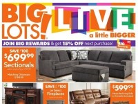 Big Lots (Special Offer) Flyer