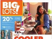 Big Lots (Weekly Specials) Flyer