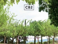 CB2 (April Catalog) Flyer