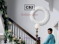 CB2 (Holidays Joy) Flyer