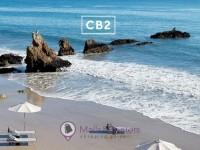 CB2 (May Catalog) Flyer