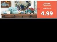 Christmas Tree Shops (Hot deals) Flyer