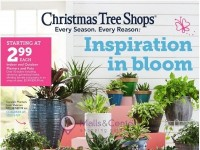 Christmas Tree Shops (Inspiration In Bloom) Flyer