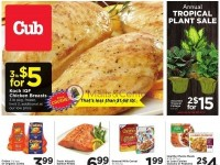 Cub Foods (Hot Deal) Flyer