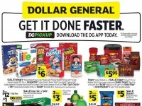 Dollar General (Special Offer - FL And NY) Flyer