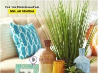 Dollar General (Unlimited Savings - WA) Flyer