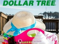 Dollar Tree (Summer Fun Lookbook) Flyer