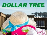 Dollar Tree (Summer Lookbook) Flyer