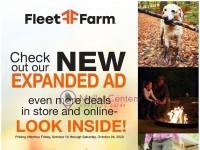 Fleet Farm (Online Expanded Ad) Flyer