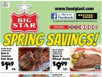 Food Giant (Special Offer - TN) Flyer