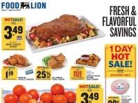 Food Lion (Special Offer - DE) Flyer