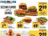 Food Lion (Special Offer - GA) Flyer