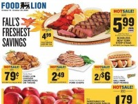Food Lion (Special offer - GA) Flyer