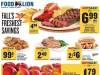 Food Lion (Special offer - MD) Flyer