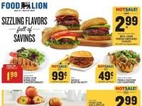 Food Lion (Special Offer - NC) Flyer