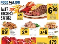 Food Lion (Special offer - SC) Flyer