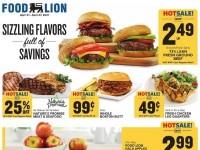 Food Lion (Special Offer - TN) Flyer