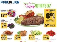 Food Lion (Special Offer - VA) Flyer