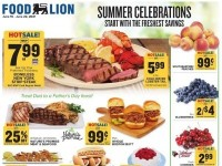 Food Lion (Special Offer - WV) Flyer