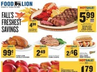 Food Lion (Special offer - WV) Flyer