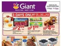 Giant Food Stores (Special Offer - DE) Flyer
