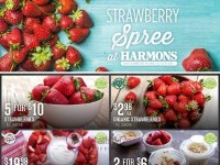 Harmons (Special Offer) Flyer