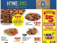 Homeland (Special Offer) Flyer