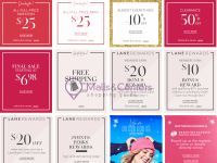 Lane Bryant (promotions) Flyer