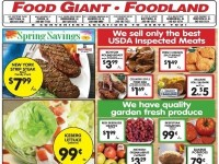 My Food Giant (spring savings) Flyer
