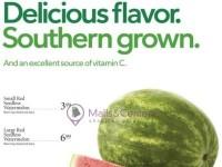 Publix (Southern Seedless Watermelon) Flyer
