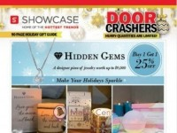 Showcase (Special Offer) Flyer