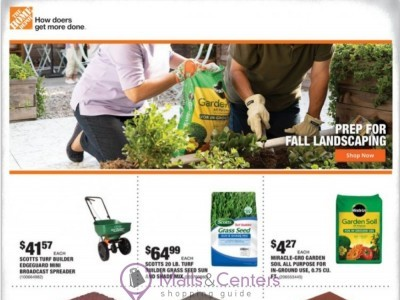 The Home Depot (Weekly Specials) Flyer